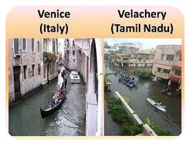 VeniceChery