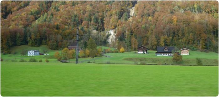 meadow3a